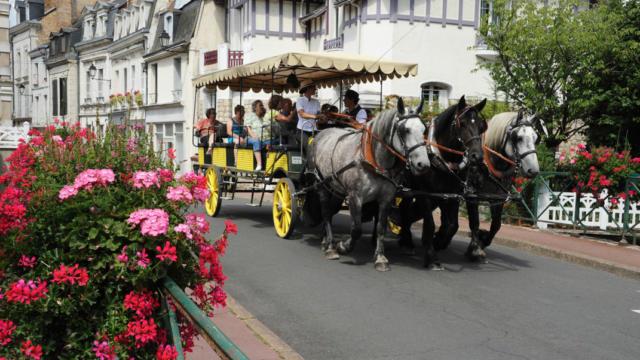 Balade en calèche à Vendôme
