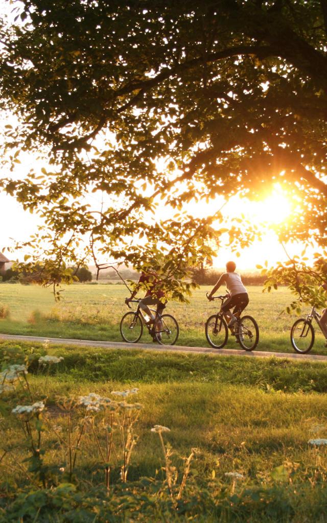 Randonnée vélo
