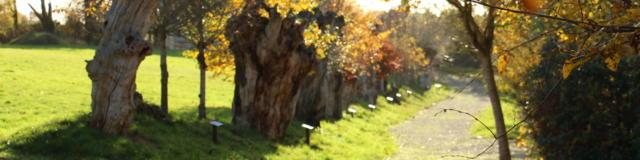 Maison Botanique - Chemin des Trognes