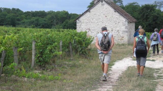 Randonnée dans les vignes à Thoré-La-Rochette