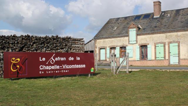 Safran de la Chapelle-Vicomtesse