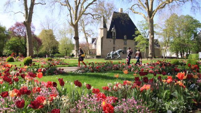 Fleurs de printemps dans le parc devant l'Hôtel de Ville de Vendôme