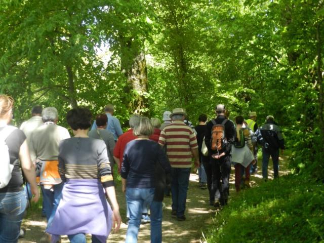 Groupe de randonneurs en Vendômois