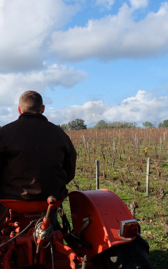 Balade En Tracteur Dans Les Vignes Domaine C. Jumert [c. Gontier Vendôme Tourisme] (9)