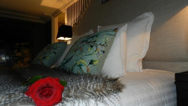 Hôtel Vendôme Avec Une Rose Crédit Ot Pay De Vendôme (38)