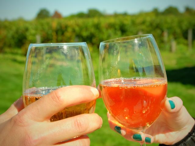 Vin Pente Des Coutis Vendôme [ot Pays De Vendôme] (1)