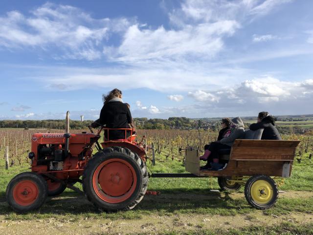 Balade En Tracteur Dans Les Vignes Domaine C. Jumert