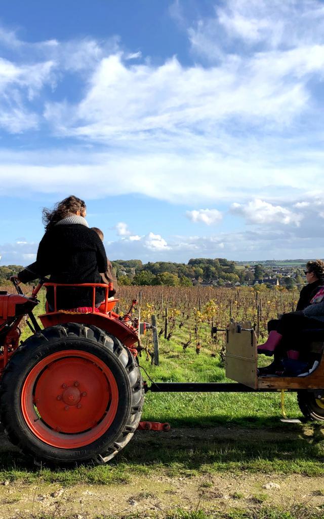 Balade En Tracteur Dans Les Vignes Domaine C. Jumert [c. Gontier Vendôme Tourisme]