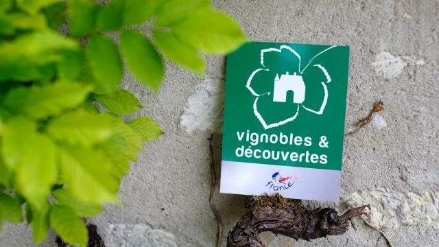 Vignobles Et Decouvertes