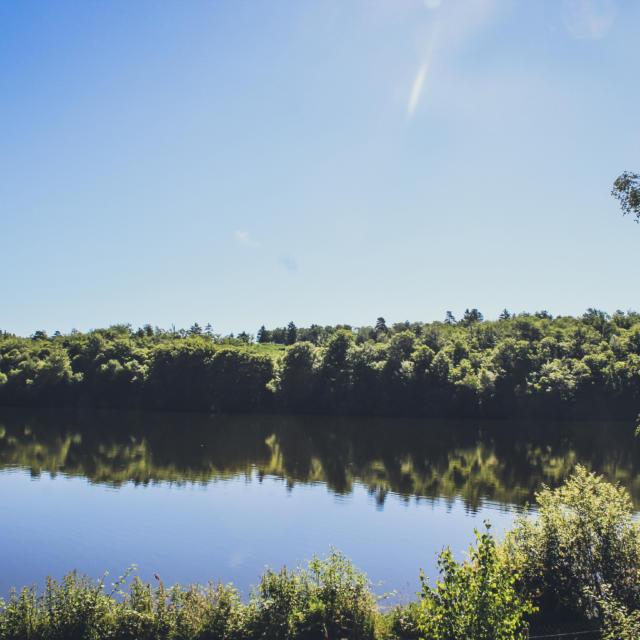 L'étang de Meyrignac l'Eglise