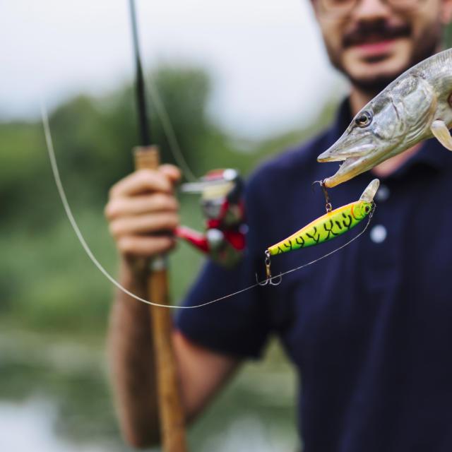 Homme pêche poisson