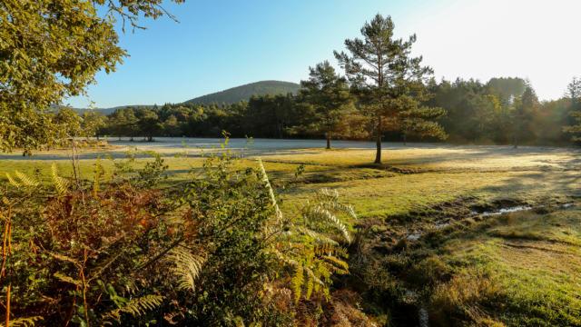Nature - Peret Bel Air
