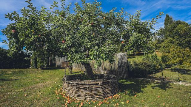 Le jardin du Centre de découverte du Moyen-âge