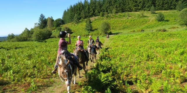 Ferme Equestre Trephy Chaumeil (8)