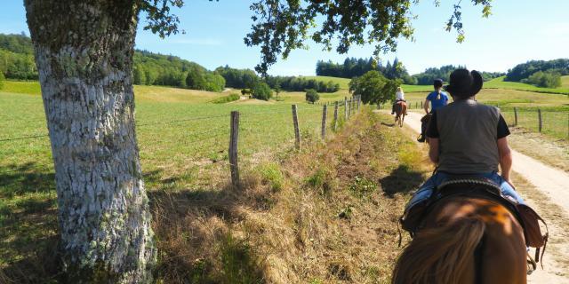 Ferme Equestre Trephy Chaumeil (9)