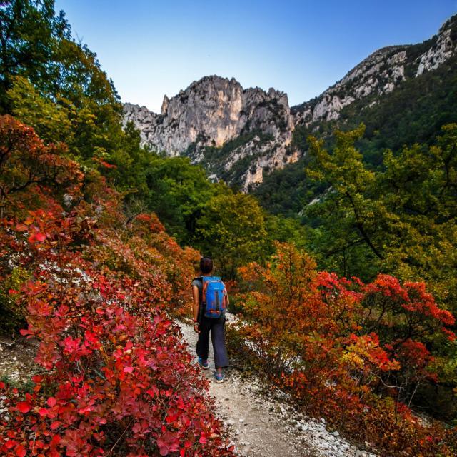 Randonnée en automne dans les Gorges du Verdon