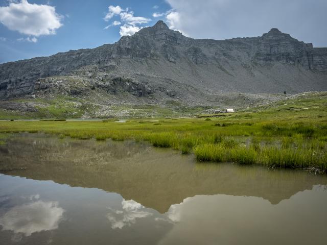 Lac des Lignin