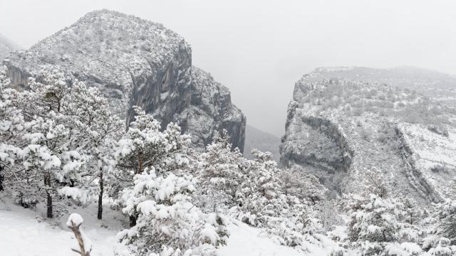 Point sublime sous la neige
