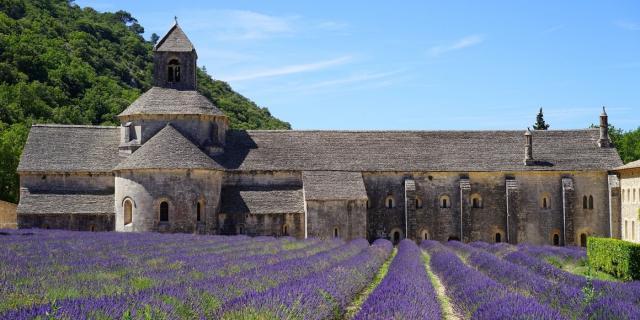 abbaye-de-senanque-gordes.jpg