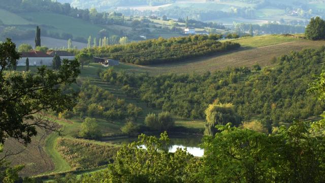 tarn-et-garonne-paysage.jpg