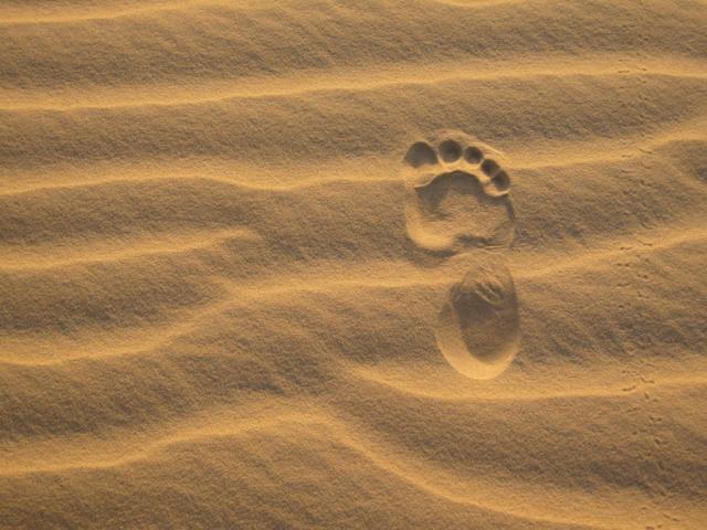 Ville jumelle - Tombouctou, Mali - Empreintes dans le sable