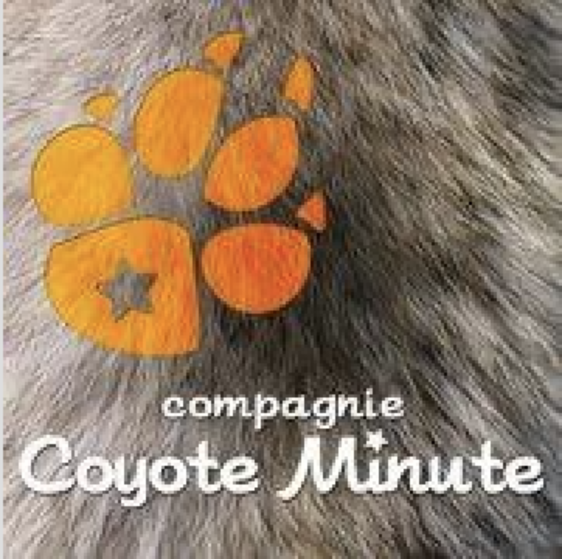 Compagnie Coyote Minute