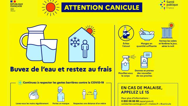 attentioncanicule.jpg