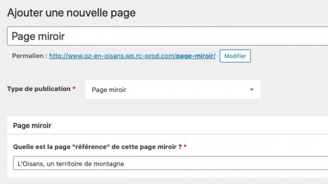 Type De Publication Page Miroir